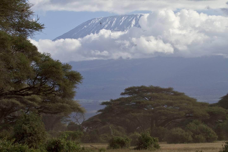 Kilimandjaro au Kenya - Tourisme