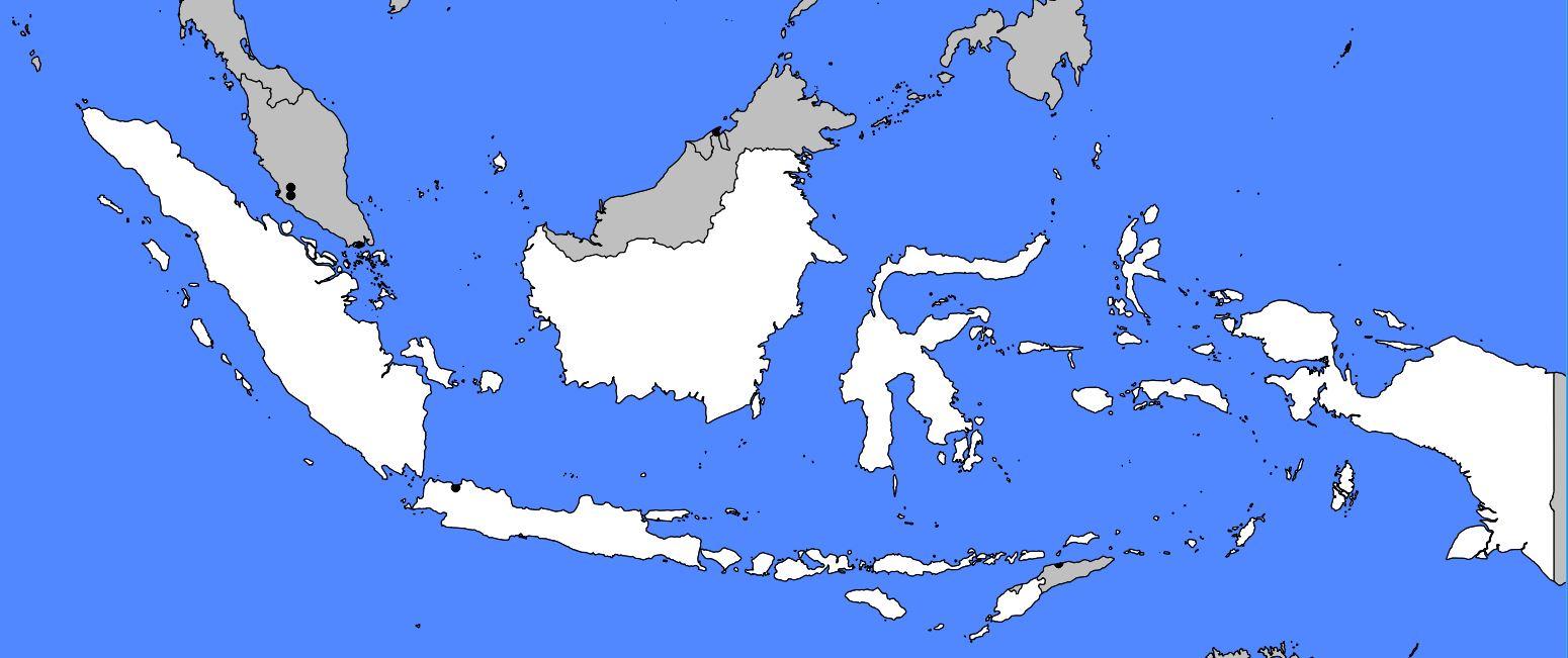Carte vierge de l'Indonésie