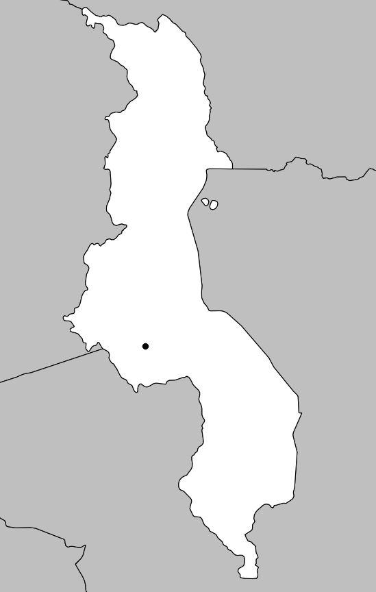 Carte vierge du Malawi