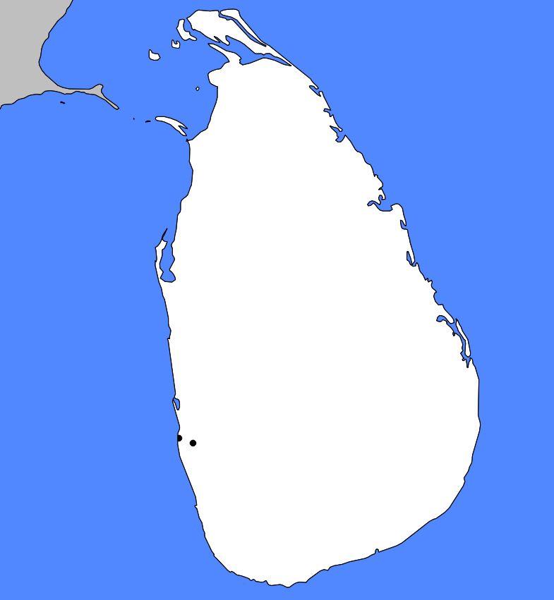Carte vierge du Sri Lanka