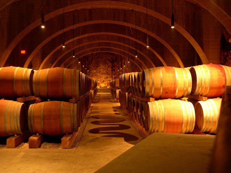 Vacances dans le vin