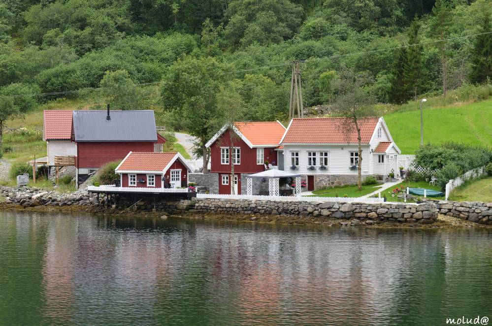 Fjord de Sogneford - Maison typique - Norvège