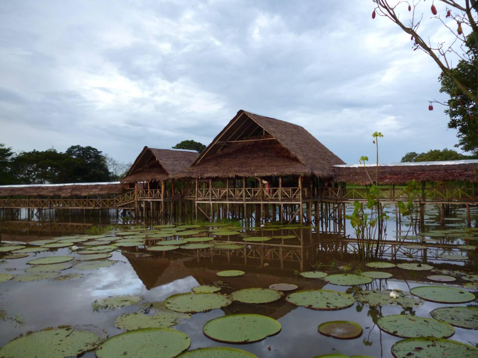 Habitation sur les rives du fleuve Amazone