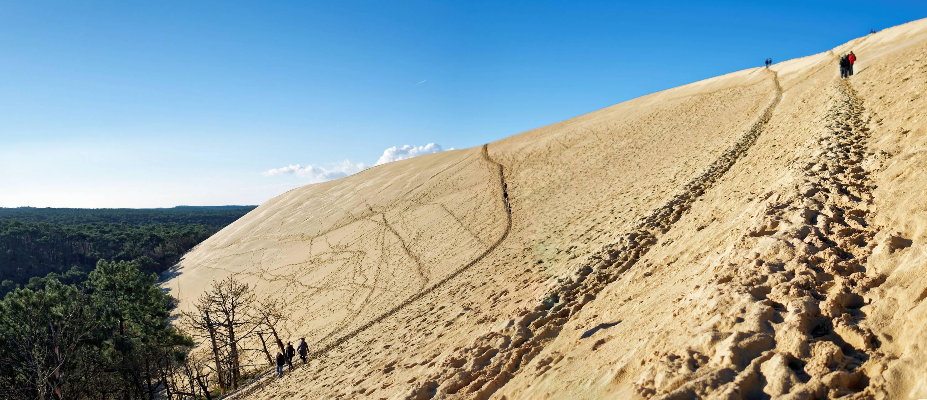 Pente sur la Dune du Pilat