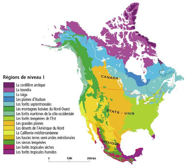 Carte Relief Amerique Du Nord.Carte De L Amerique Du Nord Et Centrale Pays Relief