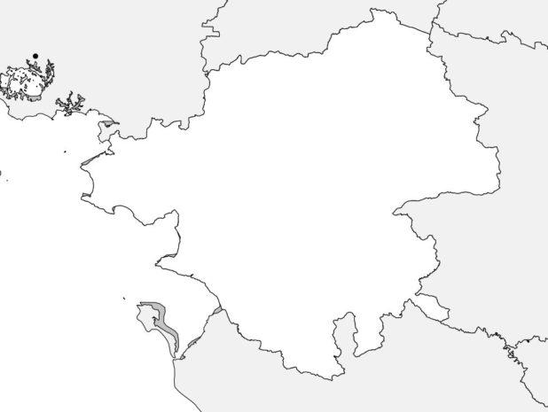 Carte vierge de la Loire Atlantique