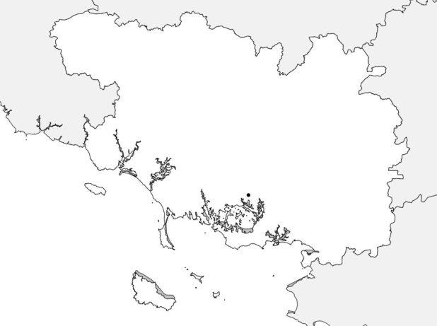 Carte vierge du Morbihan