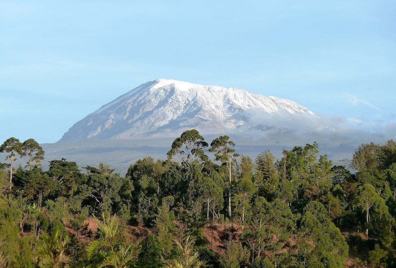 Savane et Kilimandjaro