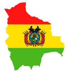 Drapeau de la Bolivie en forme de pays