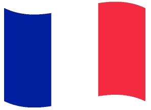 Drapeau ondulé de la France