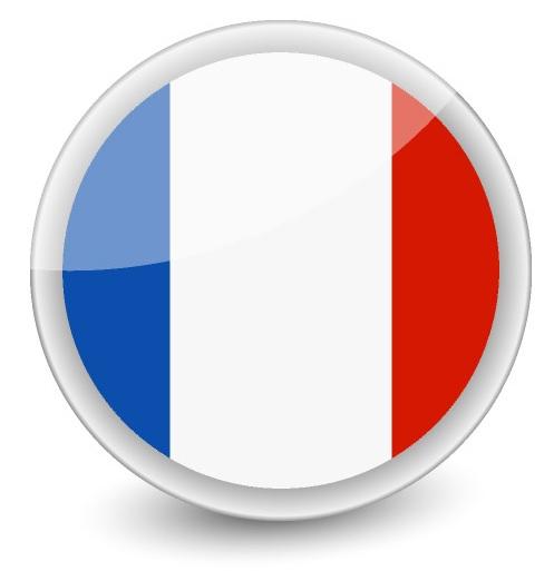 Drapeau de la France rond
