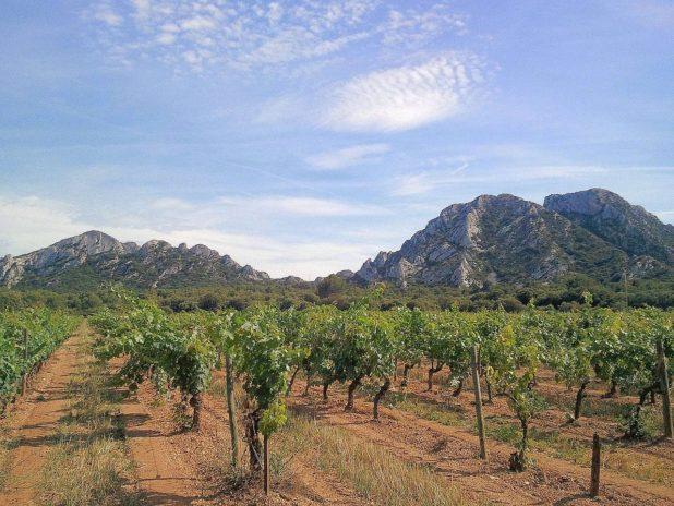Le massif des Alpilles à proximité de Saint-Rémy de Provence